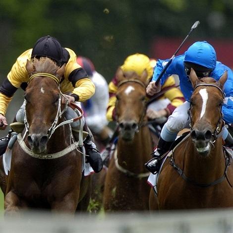 horse-racing-shop